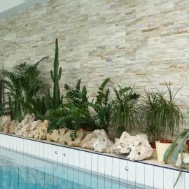 kamena bunjica uz bazen