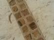 pod u mramoru pietra ducale sa umecima mramora picasso gold